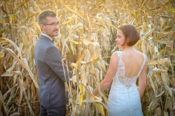 Plener Tarnów kukurydza