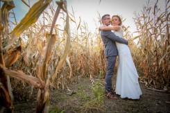 Plener Tarnów w kukurydzy